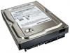"""Жесткий диск 3.5"""" Samsung 160Gb (HD161HJ) SATA II 7200rpm 16Mb"""